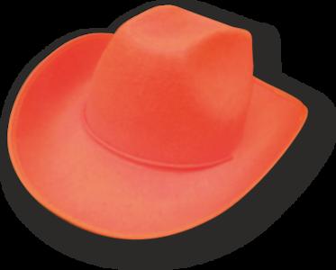 28183 Cowboyhoed vilt