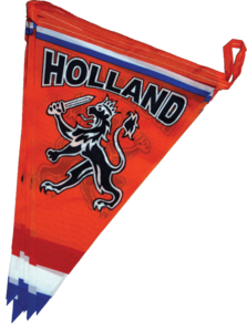 28071 Luxe vlaggenlijn polyester met print